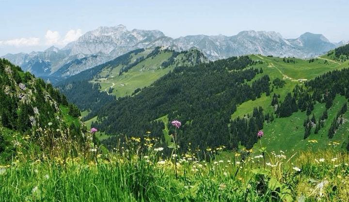 Activiteit Zwitserland